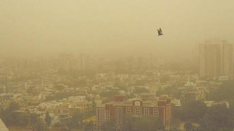 दिल्ली-NCR: प्रदूषण नियंत्रण बोर्ड की दफ्तरों को सलाह, कर्मचारियों को घर से काम करने दें