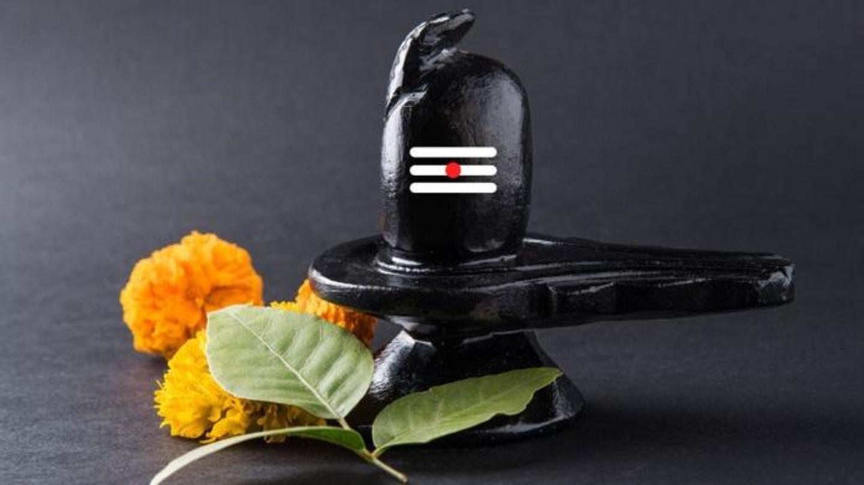 सावन शिवरात्रि विशेष: भगवान शिव के प्रिय ये पत्ते स्वास्थ्य के लिए होते हैं फायदेमंद | न्यूजबाइट्स