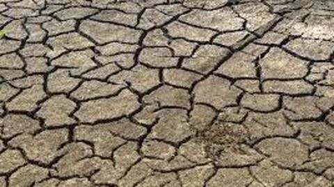 India's 235 districts likely to face drought