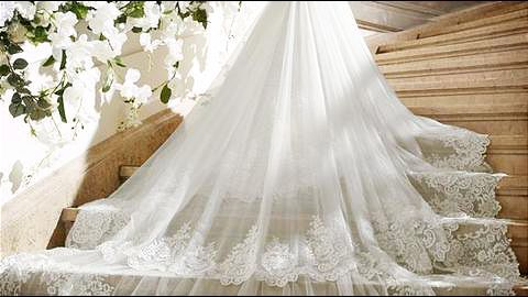 When the wedding dresses stole the show!
