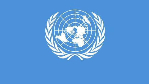 What does the UN Tax Trust Fund do?