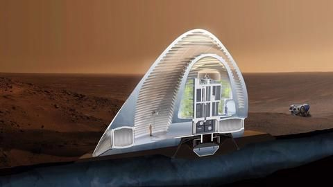 'Astronauts in Mars may face fungal infection risk'