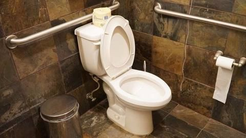 Woman divorces husband having no toilet at home