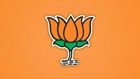 Most BJP funds came from real estate, mining, energy sectors