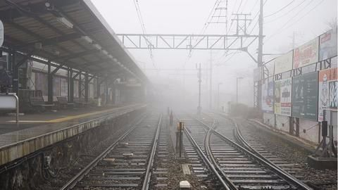 Fog delays trains and flights, many cancelled