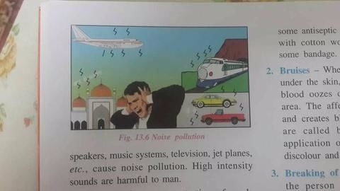 Controversy: ICSE textbook depicts mosque as source of noise pollution