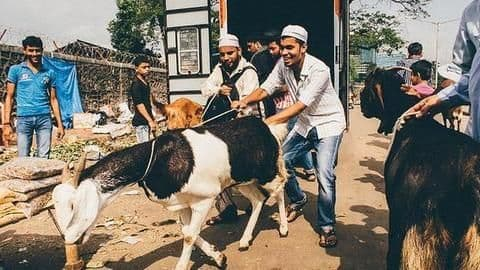 Ahead of Bakri Eid, government-agency launches campaign against animal sacrifice
