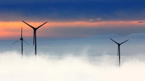 Wind power tariffs fall to a record low