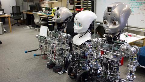 Sneak-peak into future: A friendly robot and a trusting human