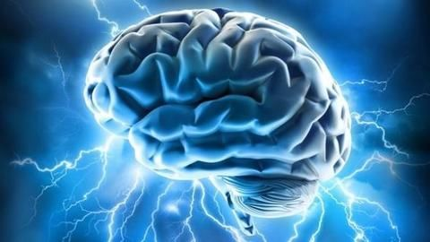 Computer that relies upon neurons and not silicon