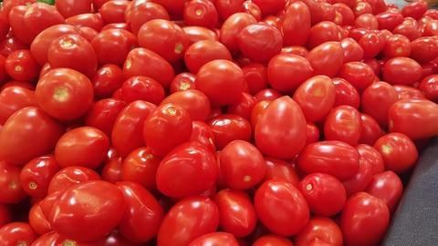 Delhi: Tomatoes being sold at Rs. 100/kg, country facing shortage