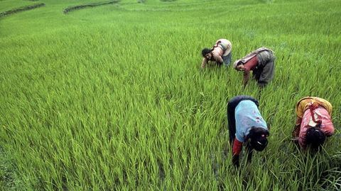 Maharashtra: Farmers to hold indefinite fast protesting land acquisition