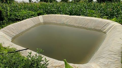 Delhi: Rainwater getting wasted because of lack of harvesting system