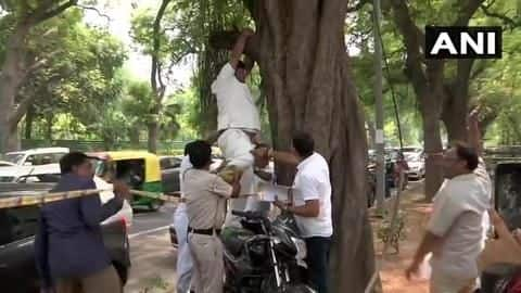 To stop Rahul Gandhi from resigning, Congress worker attempts suicide