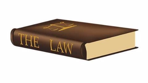 Legal dimension in information technology