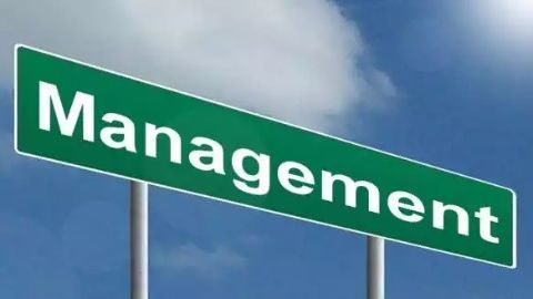 IIMs dominate the management school space
