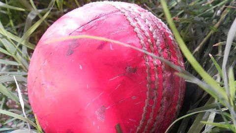 Pink ball to come to India