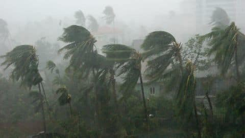 Planned infrastructure reduces cyclone casualties in Bangladesh