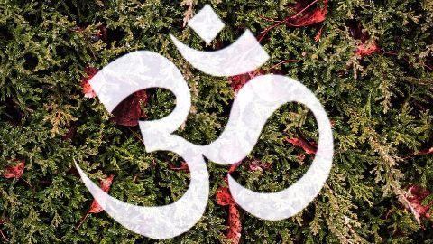 Chanting 'Om' not a must, says AYUSH Ministry