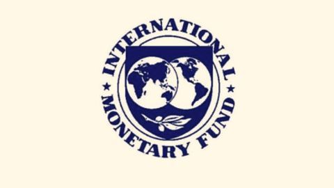 An important net contributor to systemic risks: IMF