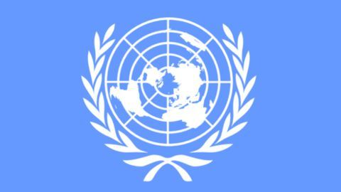 India abstains from voting for UN post on sexual orientation