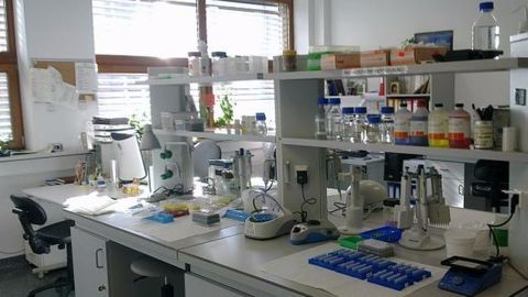 First artificial photosynthesis facility developed