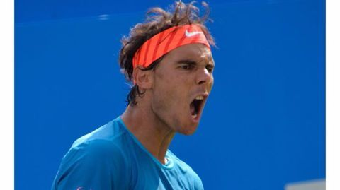 Nadal, Ferrer win their respective matches