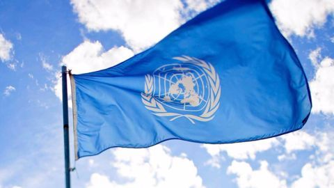 Indian lawyer on UN International Law Commission
