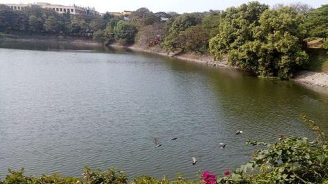 300-year-old pond to be revived after decades of struggle