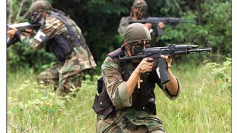 Social media norms for paramilitary forces