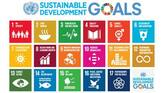 India to partner with developing countries to achieve SDGs