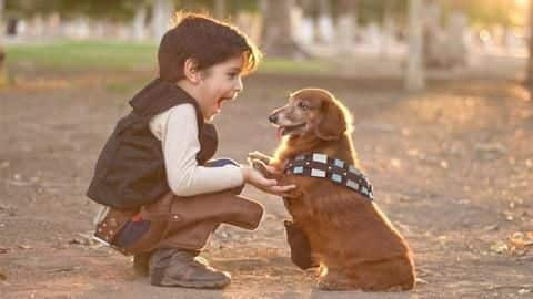 Five tips to introduce a new pet to your kids