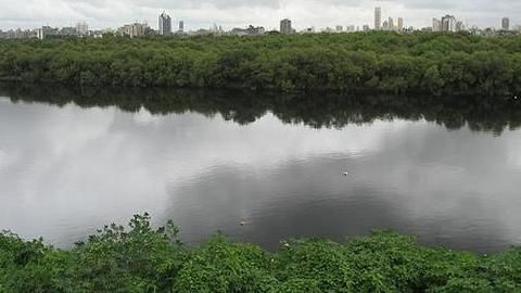 Now govt to regulate river waters?