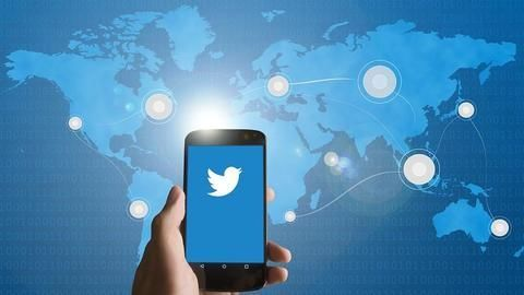 What role does social media play in election-wins?