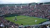 Wimbledon: 5 greatest players of all time