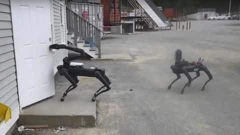 Boston Dynamics' robo-dog joined a police bomb squad