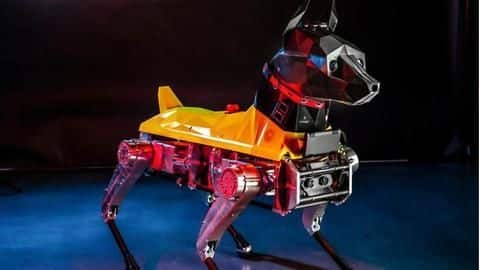 Meet Astro, 'robo-dog' that trains, behaves like a real dog