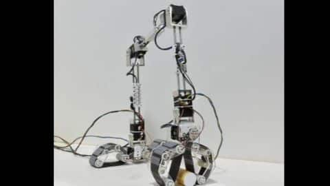 This IIT-Madras robot can grab things like a human