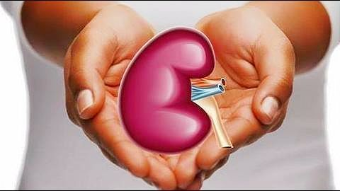 Delhi: Kidneys of poisoned girl save two; first in world