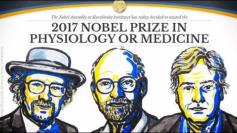 The 2017 Nobel Prize in Physiology or Medicine