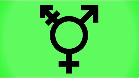 India at the forefront of recognizing transgenders' equal rights