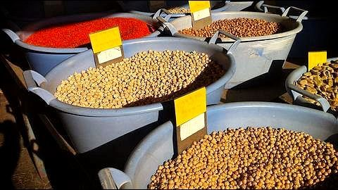 Record output of grains to moderate prices