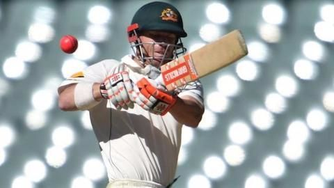 Ashes series in doubt over pay dispute, says David Warner