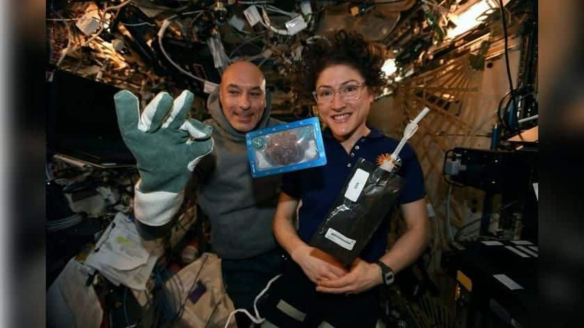 NASA, ESA astronauts baked 'space cookies' for the first time