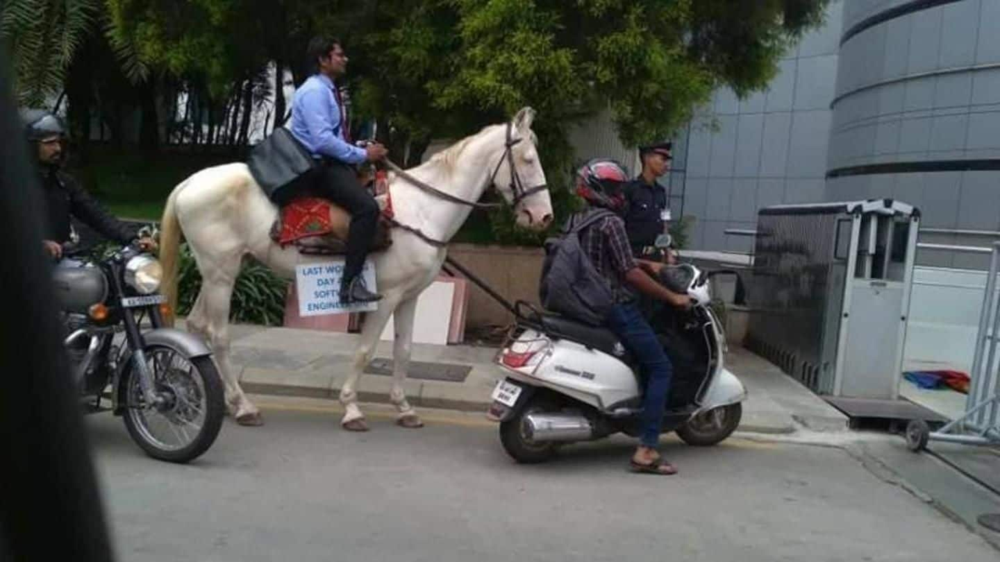 Bengaluru: The reason behind techie's horse-ride to work needs attention
