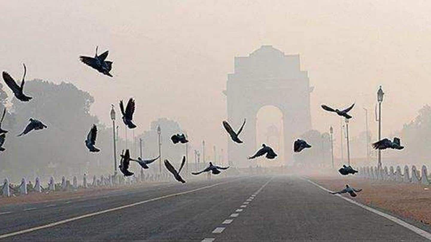 Delhi: Clear skies make this February one of the warmest