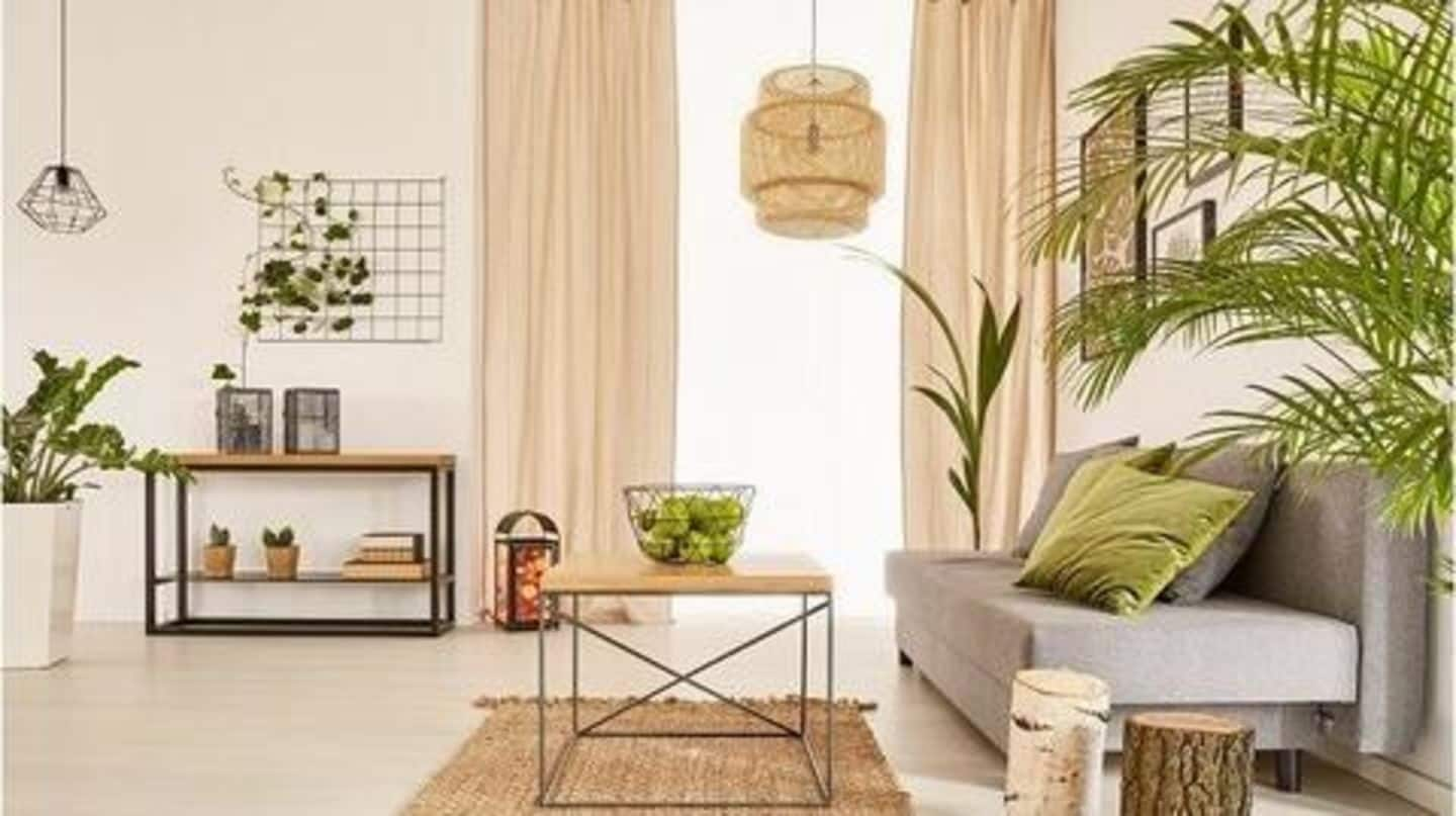 8 cool and cheap home decor ideas you should try