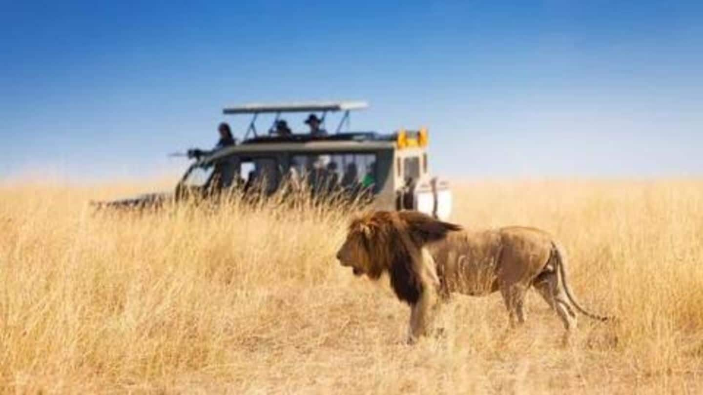 Five best National Parks in Africa: Details here