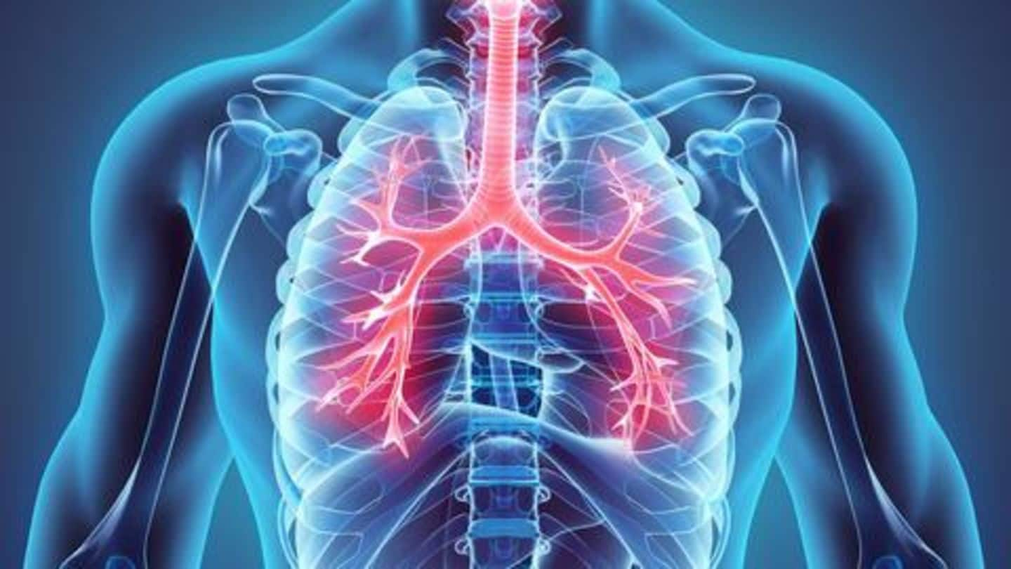 Follow these tips to keep your lungs healthy