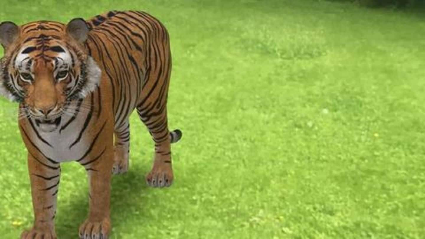 #TechBytes: How to view life-sized 'AR animals' using your phone